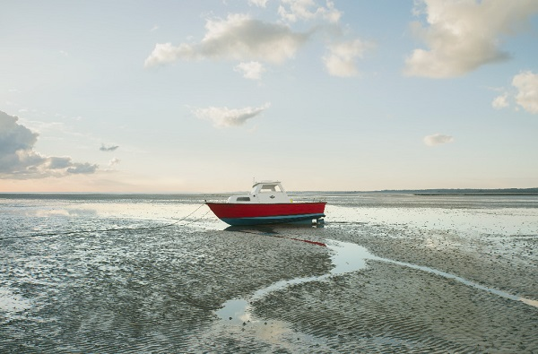 виставка морських пейзажів.jpg3